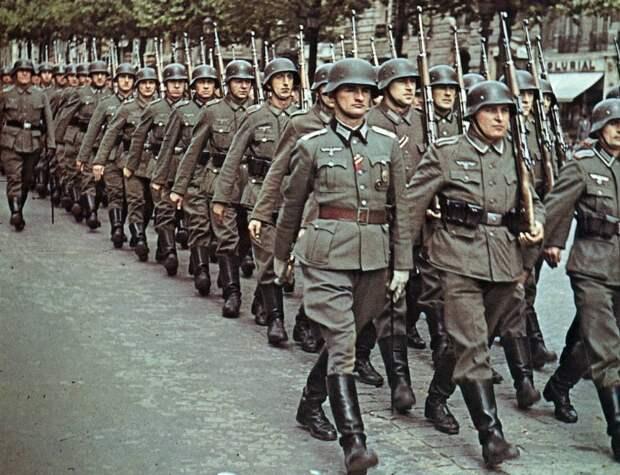 Австрийские псы Гитлера. История дивизии, штурмовавшей Брестскую крепость
