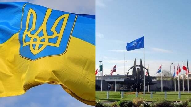 Киев остался недоволен «абстрактными заявлениями» о перспективах в НАТО