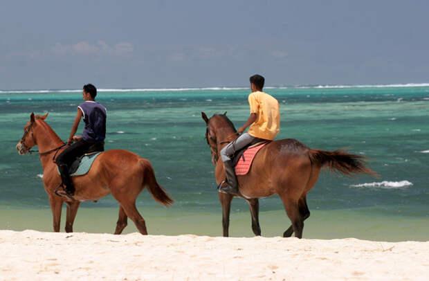Конные прогулки по пляжу