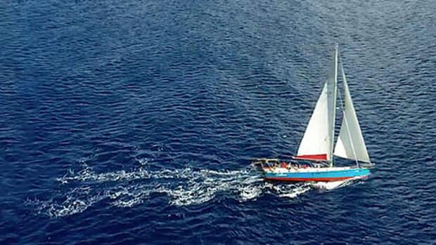 Океан на карантине (ТРЕЙЛЕР)