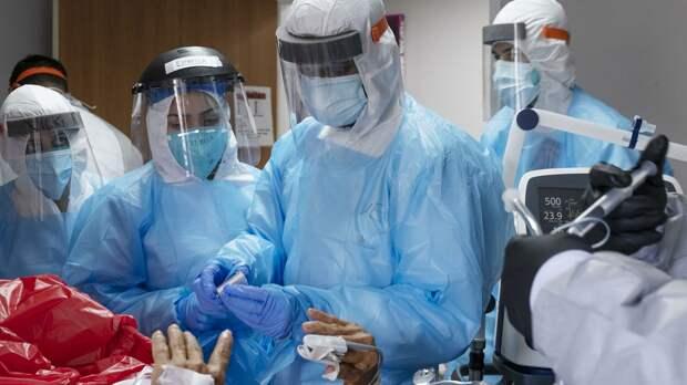 Австралийские ученые определили продолжительность действия иммунитета к коронавирусу