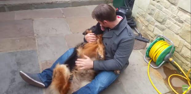 Собака рыдала от счастья встречи со своим лучшим другом!