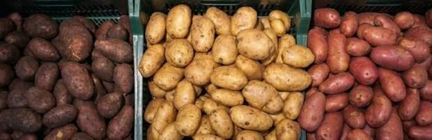В Актау снижены цены на овощи