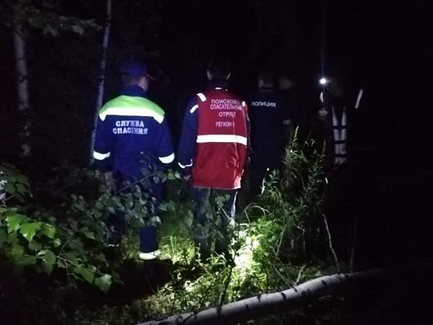 Найдена, жива: грибник из Ижевска наткнулся в лесу на потерявшуюся двое суток назад старушку