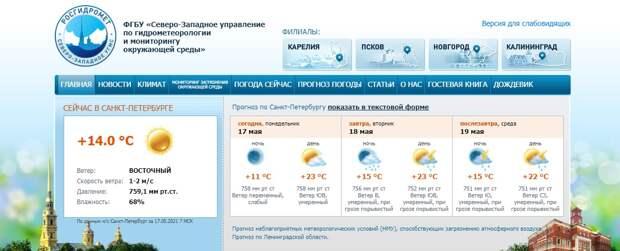 Аномальная жара: в Петербурге на 8 градусов выше нормы, «бонусом» идут грозы