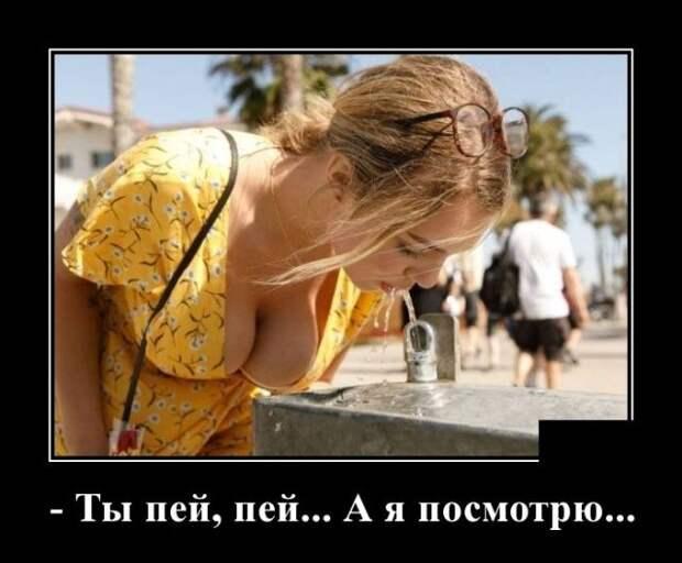 Демотиваторы. | Мужской юмор, Самые смешные картинки, Фотография юмор