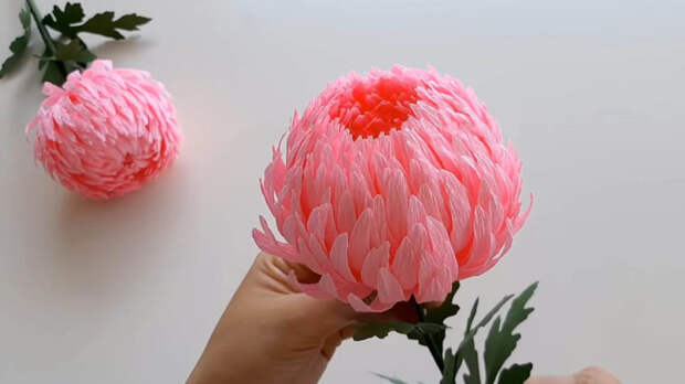 Фантастически красивая хризантема за 30 минут