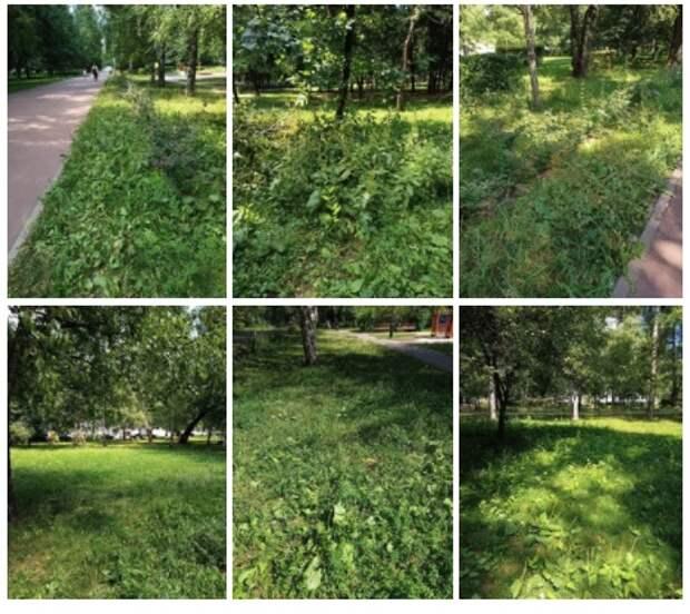 В Бабушкинском приостановили покос травы из-за жары