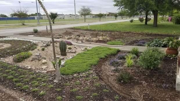 Муж вырастил сад, выполняя обещание, которое он дал своей покойной жене в мире, история, люди, растения, сад, цветы