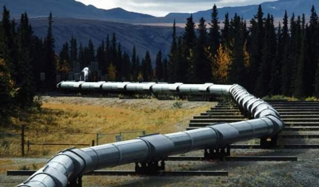 Россия покинула пятерку лидеров поставок нефти вТурцию