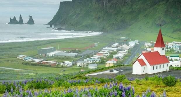 Почему в Исландии нет комаров
