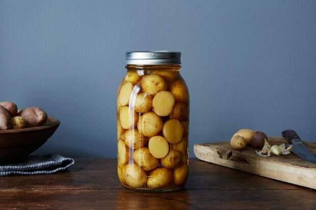 Маринованный картофель на зиму — вкуснотища необыкновенная