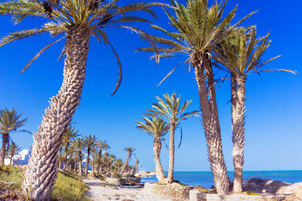 Путешествие по Тунису: Джерба