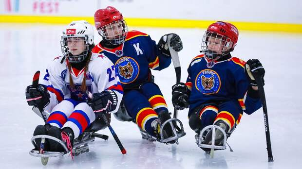В 7 новых регионах России будут открыты хоккейные секции для детей с инвалидностью