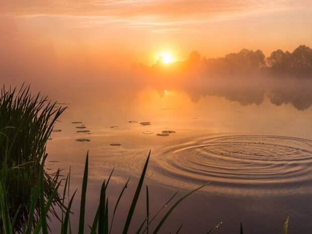 Красота  лето, природа, рыбалка, хобби