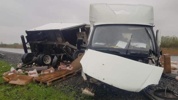 Пять человек погибли в ДТП на сибирской трассе