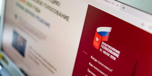 Проголосовавшие онлайн поддержали новую редакцию Конституции