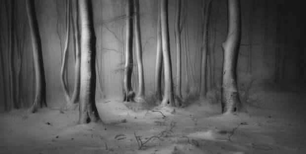 Премия «Снег и лед»: Центральный Балкан, Болгария. Фото: Веселин Атанасов.