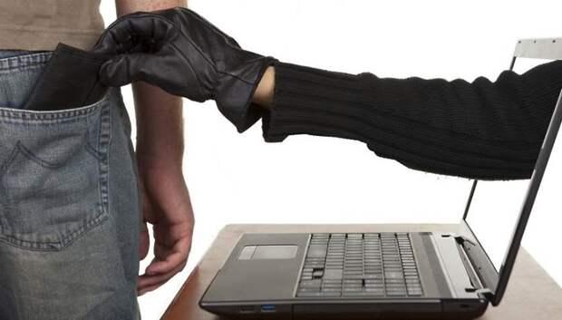 Жителям Подмосковья рассказали, как распознать фишинг и избежать вирусов в Сети