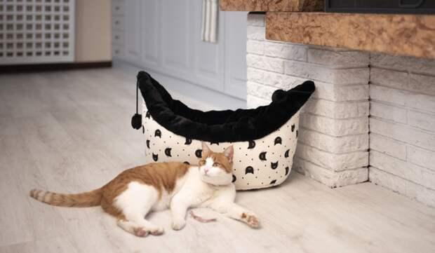 домики лежанки для котов