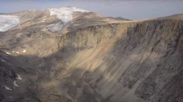 В Арктике оттаяли растения, которые замерзли 40 тысяч лет назад