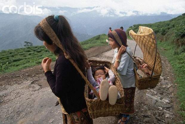 Изредка в Мексике можно встретить мам, несущих своих детей в люльках или колыбелях с плетеной лямкой, которую фиксируют на лбу, а колыбель чаще всего сдвигают за спину интересное, младенцы, ношение, обычаи, пеленание, факты