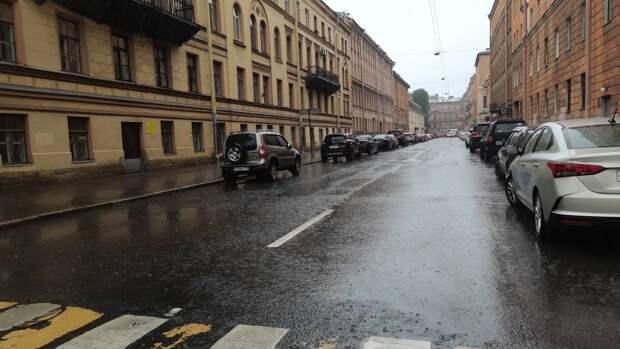 Потепление до +9 и дожди ожидаются в Петербурге 25 октября