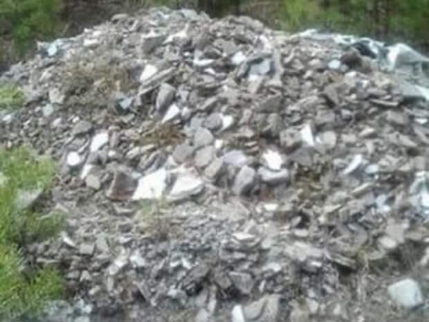 Пенсионерки собрали 50 мешков мусора в лесу возле Песчанки