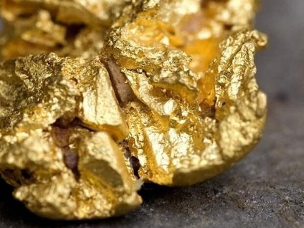 Около 6 кг золота вынес работник золотодобывающей компании в Забайкалье
