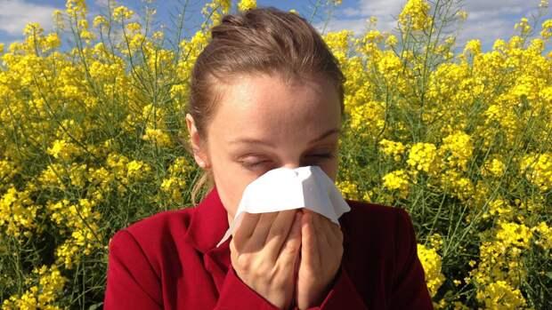 Врач-терапевт объяснил, каких растений стоит опасаться аллергикам в период цветения