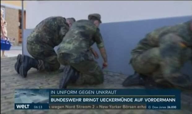Welt: Бундесвер ввязался в новую войну с необычным противником