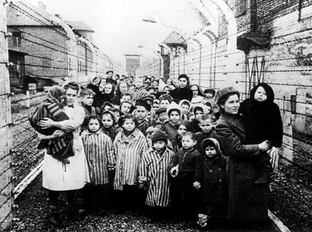 Холокостом по детям. Часть 4