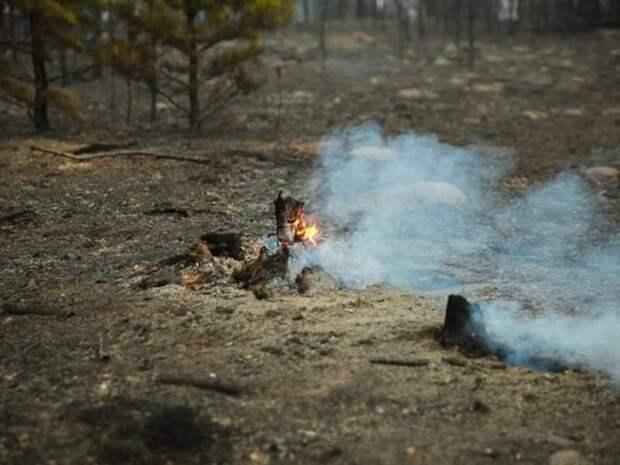 Высокий класс пожарной опасности ожидается в Забайкалье 17 мая