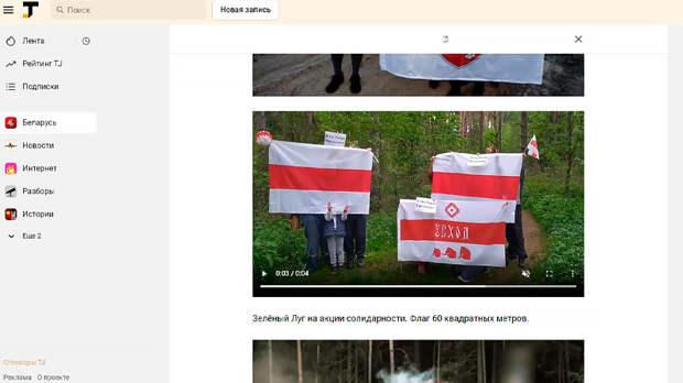 Скриншот страницы tjournal.ru/by