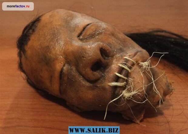 Высушенные человеческие головы