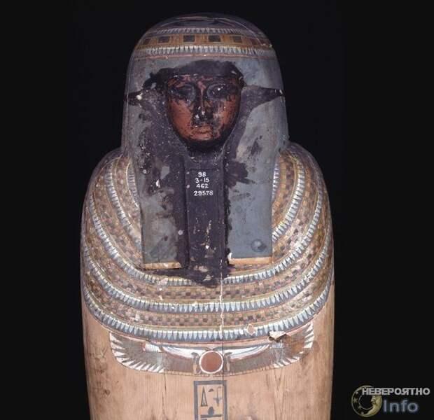 Результаты исследования чёрной жидкости из древнеегипетского саркофага