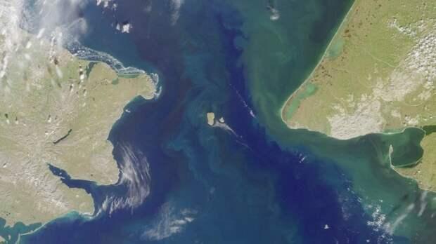Берингов пролив — фотография со спутника./Фото: imag.one