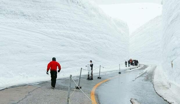 6 крутых фотографий снежного коридора в Японии