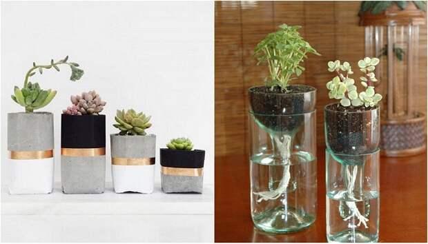 Примеры создания домашних садов, что создадут уют даже в осенние холодные вечера.