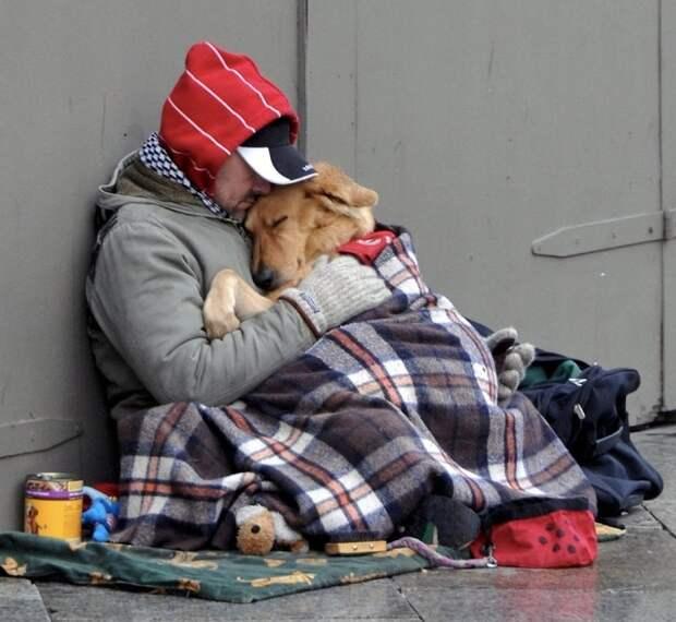 «На том свете нас встретят наши собаки». Сильная история о настоящей любви