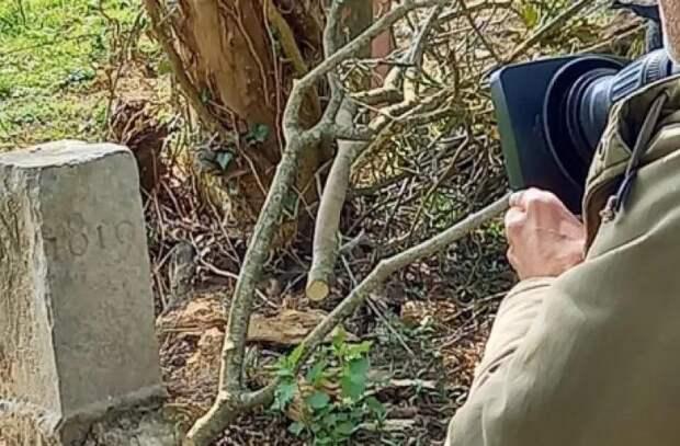 Бельгийский фермер случайно передвинул границу с Францией
