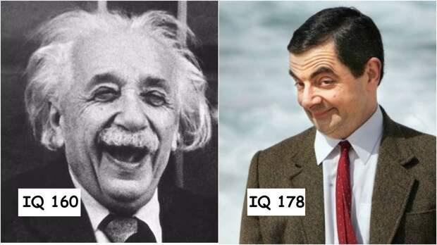 12 мировых знаменитостей с высоким уровнем интеллекта