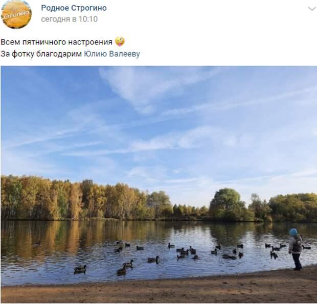 Фото дня: симфония неба и воды в Строгине