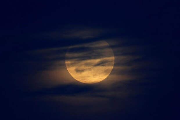 Кровавая волчья супер-Луна в Калифорнии
