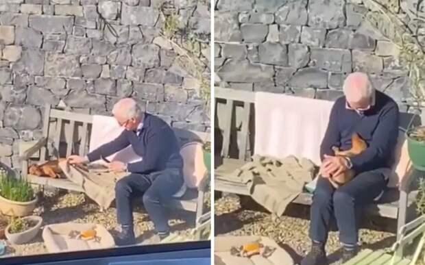 Милое общение мужчины с псом, которого он не хотел, растрогало соцсети