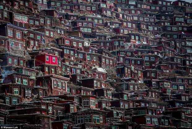Крупнейшая буддийская академия в мире: для 40000 монахов TV под запретом, но айфоны разрешены