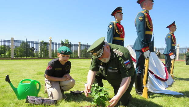 Аллею «Сирень Победы» посадили на мемориальном кладбище в Мытищах