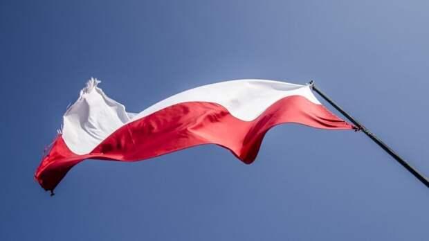 Польский политик: президент Украины сам отдаляет вступление страны в НАТО и ЕС