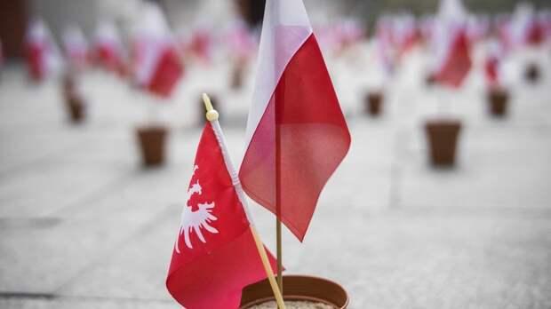Редкостные сволочи: Демонтаж памятника советским бойцам в Польше вызвал гнев в Сети