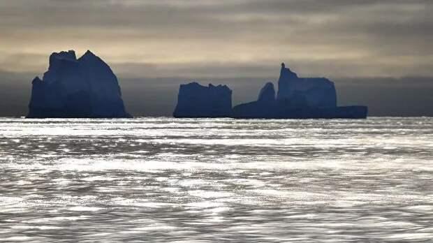 Раскрыта тайна таинственного ископаемого из Антарктиды